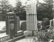 Johannes van der Walt grafsteen k