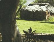 Pioniershuis Horneshek klein