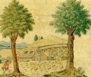 Figuur 4. 'n Wigvormige dakhuis op lae mure in die Swartland, in die huidige distrik Malmesbury, Wes-Kaap. (Anoniem, Uitsig op 'n Kaapse koring, wyn en veeplaas (detail). Uit: P.E. Raper & M. Boucher (Eds.), Robert Jacob Gordon: Cape travels, 1777 to 1786 I (Houghton, © 1988), p. 38.