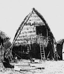 Figuur 5. 'n Bootvormige wagenberg (waenhuis) met 'n hooisolder, Maillen-Courrière, Namen, Walonië, voor 1950. Uit: C.V. Trefois, Ontwikkelingsgeschiedenis van onze landelijke architectuur (Antwerpen, 1950), p. 79.